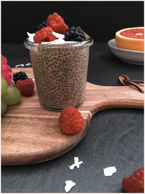 Coffee Chia Seed Pudding - ingredients. | PearTreePond Blog #chiapudding #coffee #breakfast