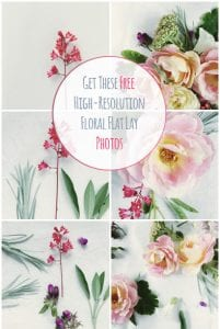 High resolution floral flat lay photos by PearTreePond | PearTreePond Blog
