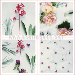 8 high-resolution floral flat lay stock photos.