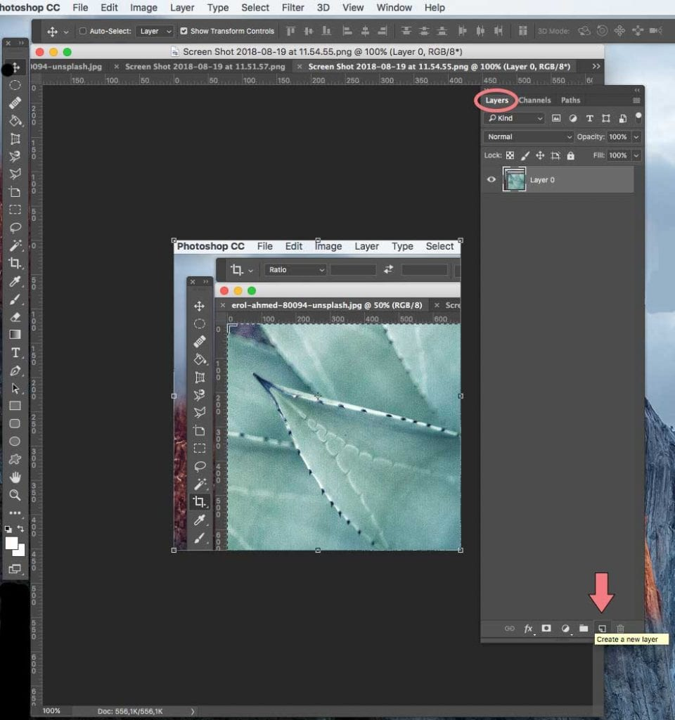 How to create a new layer in Photoshop | PearTreePond - The Solopreneur Safety Net