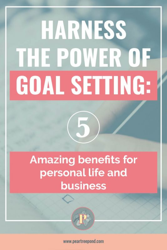 Goal setting - Pin image   PearTreePond - The Solopreneur Safety Net