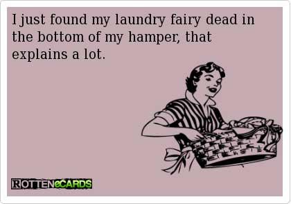mompreneur life: the laundry fairy