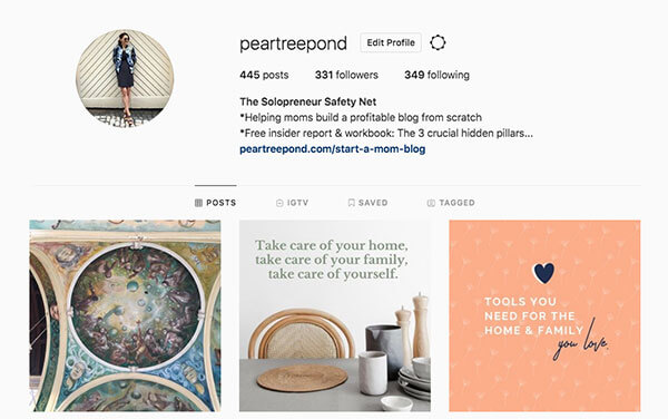 PearTreePond - The Solopreneur Safety Net on Instagram